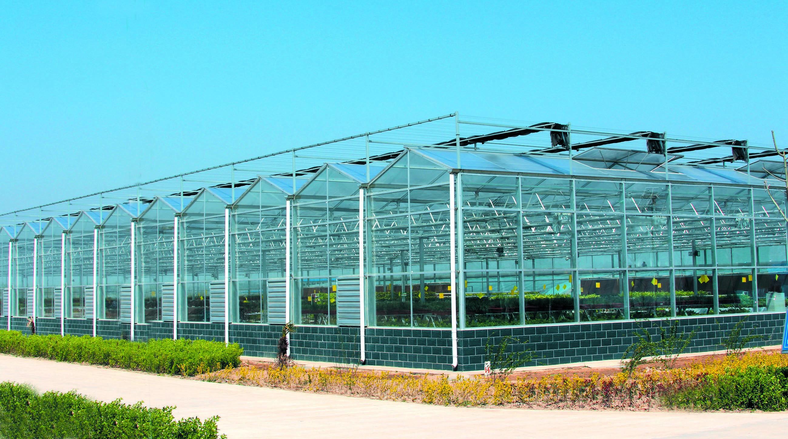 连栋智能玻璃温室